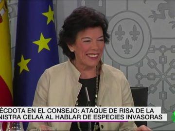Anécdota en el Consejo de Ministros: ataque de tisa de Isabel Celaá al hablar de especies invasoras