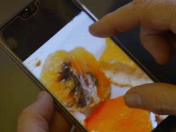 """Alberto Chicote investiga la comida en residencias universitarias: """"¿Pero cómo puede estar la fruta en estas condiciones?"""""""