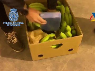Interceptados 275 kilos de cocaína ocultos en cajas de bananas en Estepona