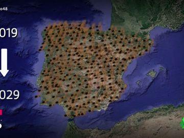 La avispa asiática tardará solo diez años en invadir toda España