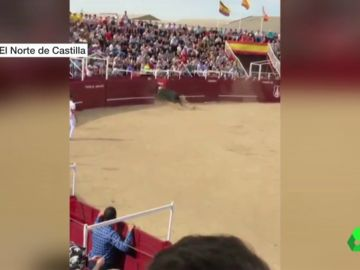 Muere el torilero de Benavente tras ser embestido por el toro en un concurso de recortes
