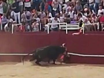 Imagen de la cornada mortal en Benavente, Zamora