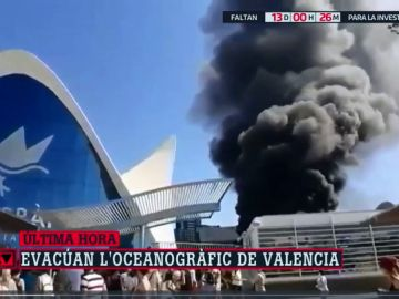 Un incendio obliga a desalojar el Oceanogràfic de Valencia