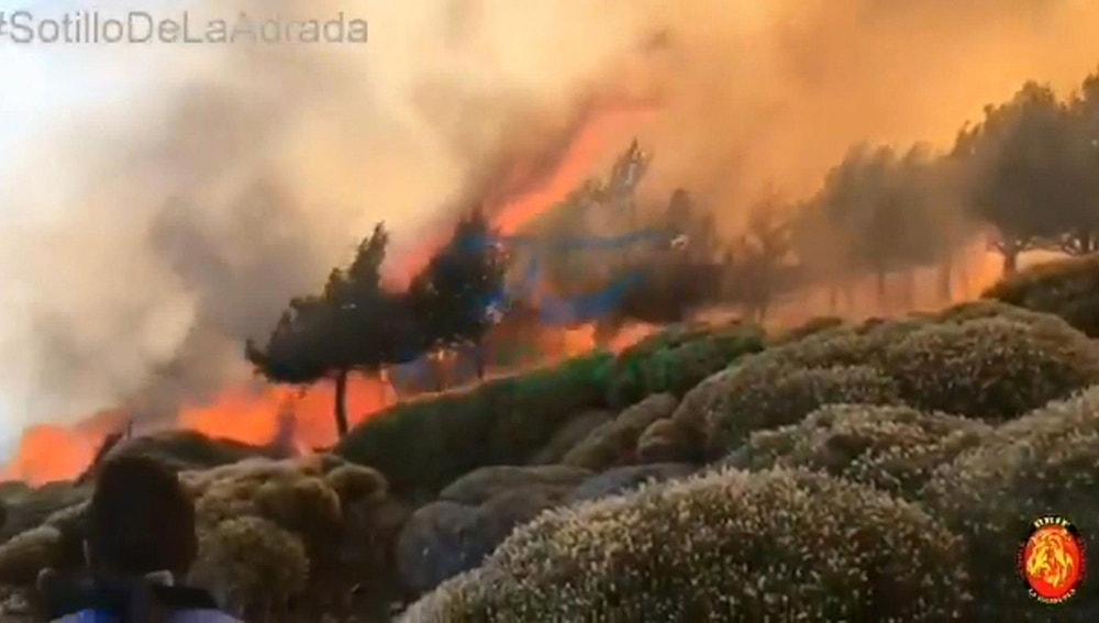 El incendio declarado este sábado en Sotillo de la Adrada, en Ávila