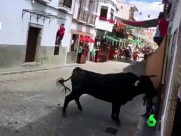 Imagen de un toro durante los encierros de El Viso