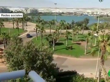 La impactante temeridad de un conductor haciendo trompos por las calles de El Ejido, Almería