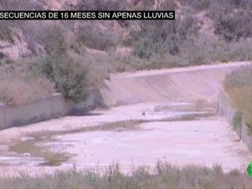 Embalses sin agua, animales sin comida y cultivos afectados: estas son las consecuencias de 16 meses de sequía