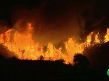 Cerca de 2.000 desalojados en Estepona por un incendio provocado al intentar quemar un avispero