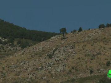Las imágenes de la ladera donde se encontró el cadáver de Blanca Fernández Ochoa