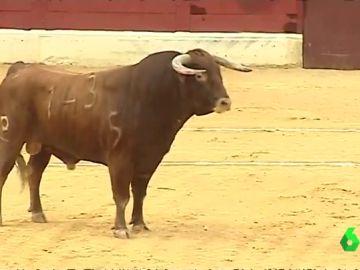 Polémica en la localidad alicantina de Villena: recupera los toros en plena fiesta de Moros y Cristianos