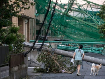 El tifón Faxai causa estragos en Japón