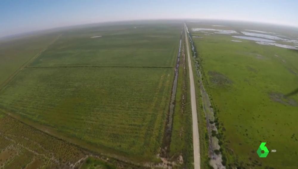 La construcción de una autovía para unir Cádiz y Huelva rodeando Doñana enfrenta a la Junta y los ecologistas
