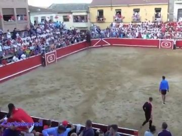 Un toro salta al callejón en Cortes, Navarra