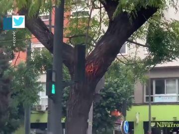 ¿Es este el semáforo peor colocado de la historia?