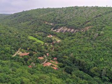 Enviado Especial comprueba en Brasil que el milagro de la reforestación es posible