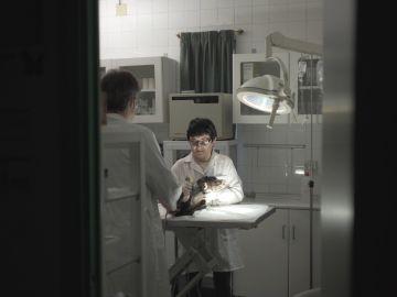 Eli en la clínica veterinaria en la que colabora