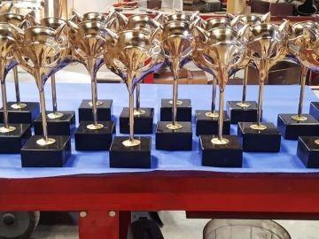 ¿Qué, dónde y cuándo son los Premios Feroz 2020?