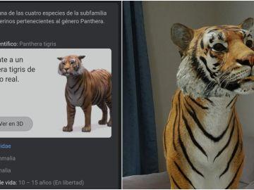 Google 'mete' a un tigre en nuestro salón