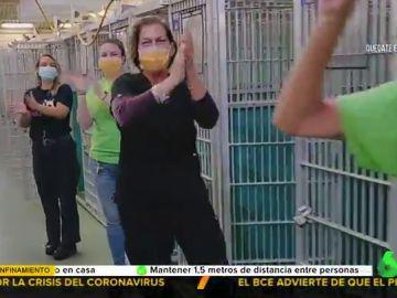 Alegrías en tiempo de pandemia: así ha celebrado un refugio de animales el quedarse vacíos en plena cuarentena