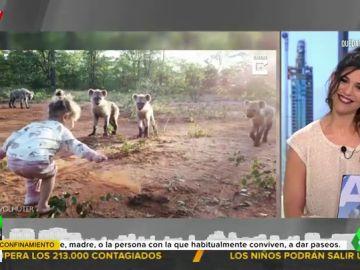 El sorprendente vídeo de una niña de dos años jugando sin miedo con una manada de hienas