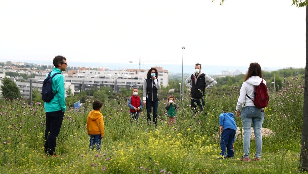 Varios padres pasean con sus hijos