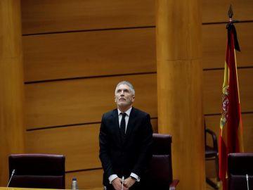 El ministro del Interior, Fernando Grande-Marlaska, en el Senado