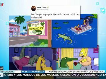 Los Simpson ya predijeron lo del cocodrilo de Valladolid