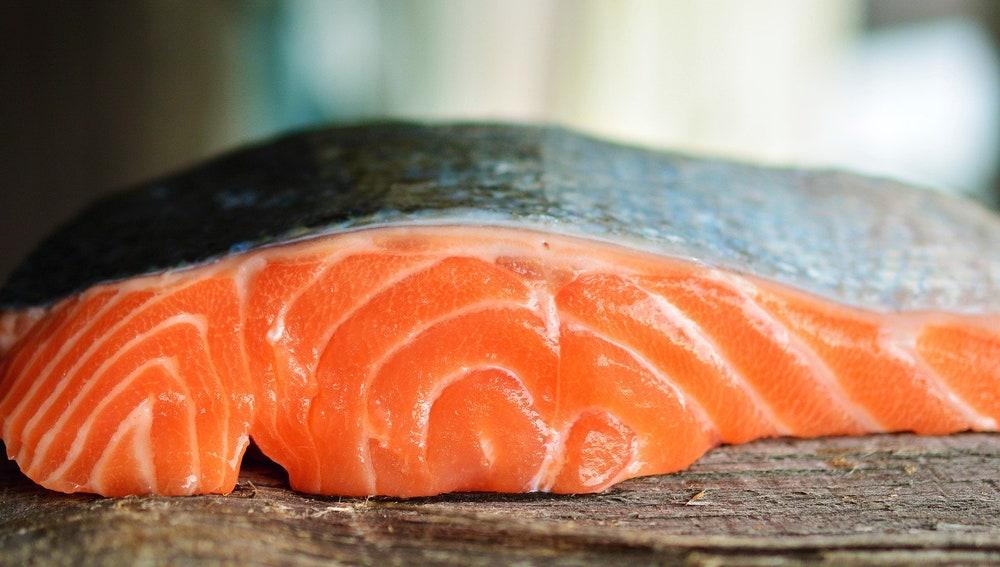 Un trozo de salmón