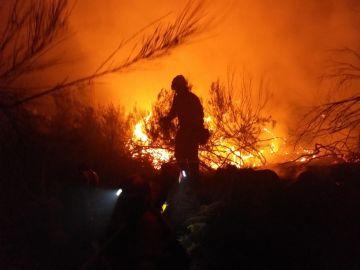 Continúa descontrolado el incendio de grandes dimensiones que afecta a Navarra, Guipúzcoa y Francia