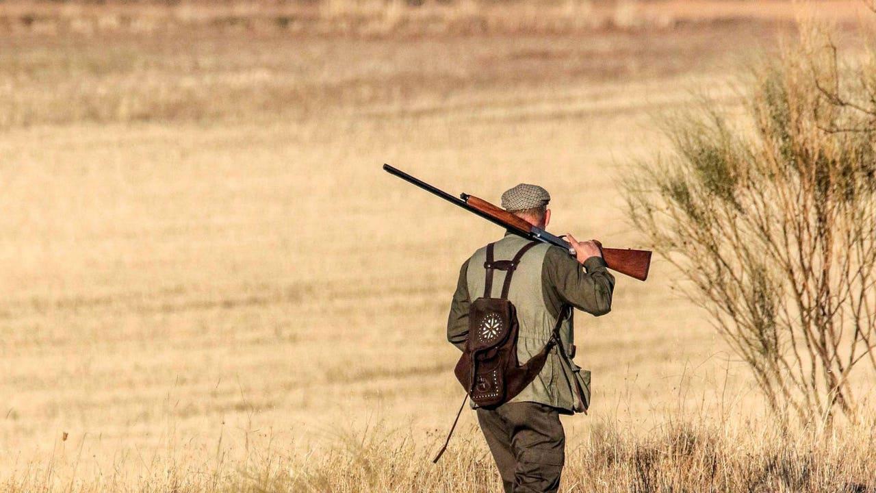 Un cazador en un coto