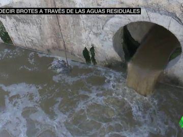 aguas residuales COVID