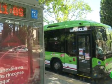 testigos accidente bus