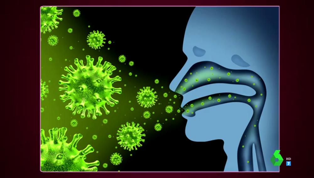Toda la verdad de la inmunidad por COVID-19: ¿cómo es la reinfección?, ¿es verdad que los curados siguen contagiando?