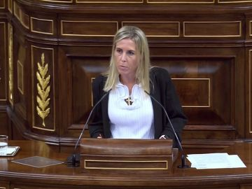 María Teresa López, diputada de Vox