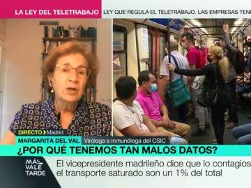 La investigadora del CSIC Margarita del Val en Más Vale Tarde