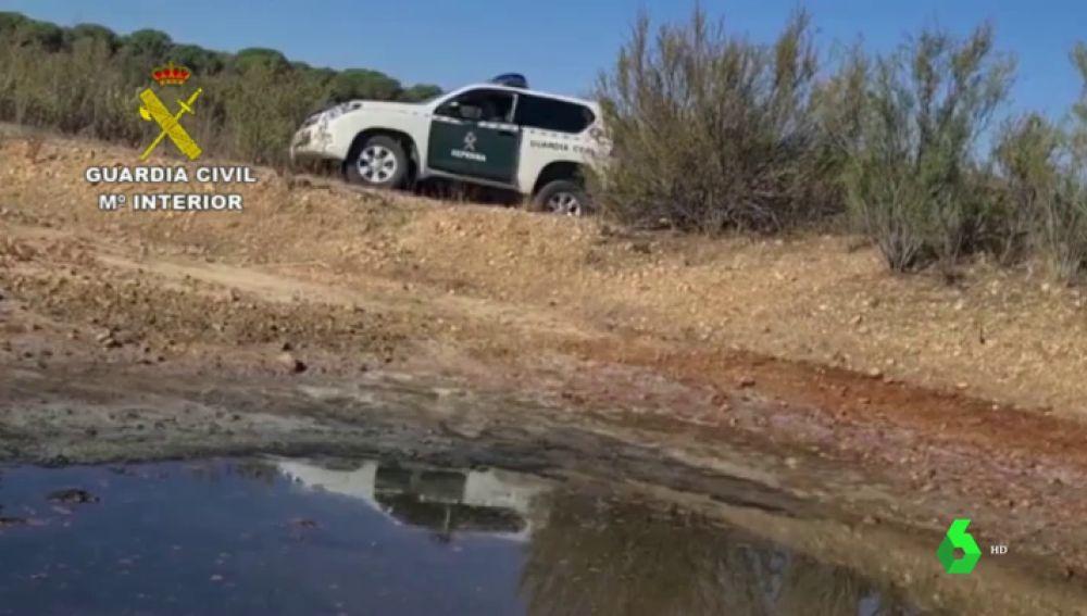 Investigan a siete personas por actividades ilegales contra la flora y la fauna protegidas de Doñana