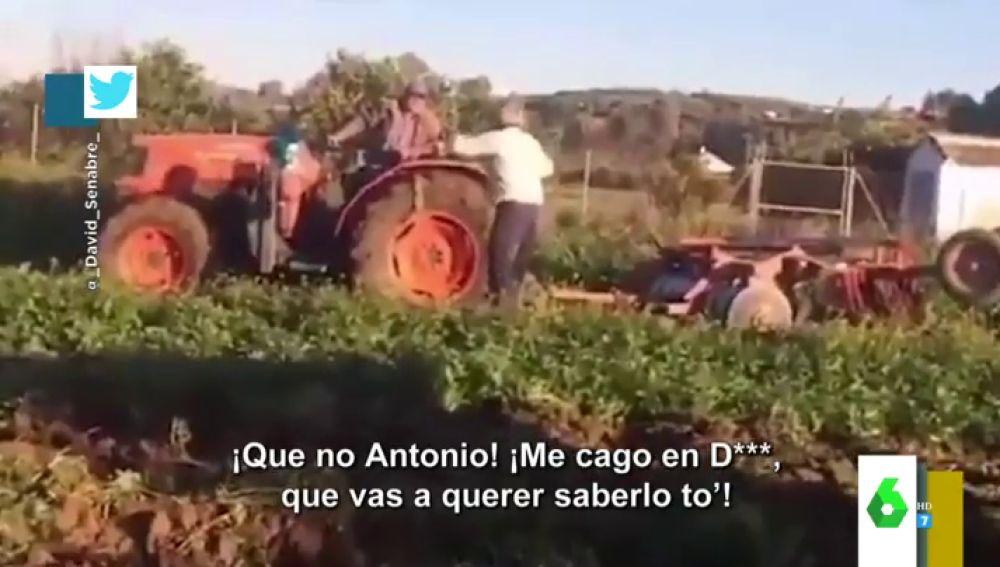 "La divertida discusión viral de dos agricultores a gritos sobre por dónde va un tractor: ""¡Vas a querer saberlo to!"""