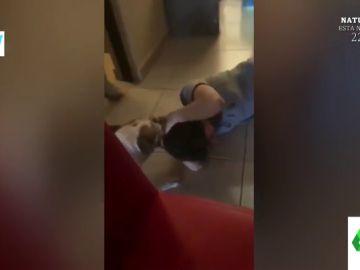 La reacción viral de un perro cuando una niña le molesta