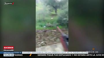 Detenido tras publicar en redes sociales un vídeo en el que se ve cómo dispara a un gato que muere agonizando