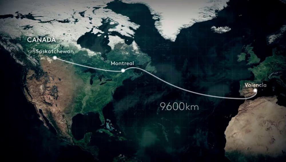 Conoce el viaje de las lentejas que importamos: 9.600 kilómetros desde Canadá y un mes de tránsito hasta que llegan al súper