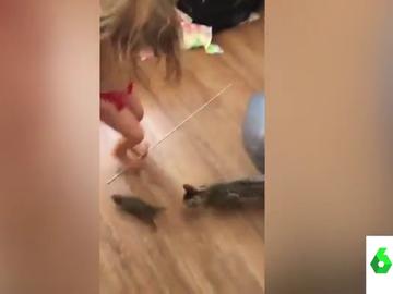 """""""¡Ay, no es un conejito bebé sino una rata!"""": la divertida reacción de una madre al ver con qué juegan su hija y su gato"""