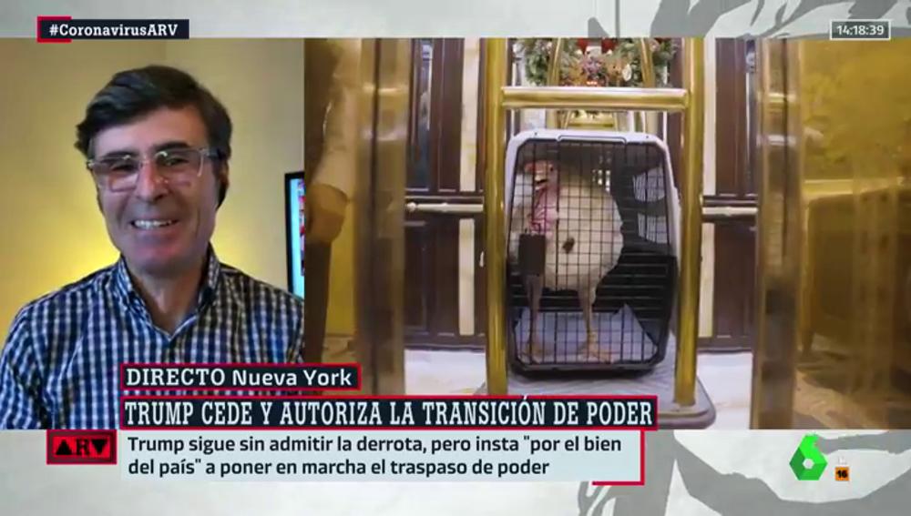 """Sandro Pozzi a Ferreras, sobre su pava de Acción de Gracias: """"No tiene nombre porque me lo voy a comer"""""""