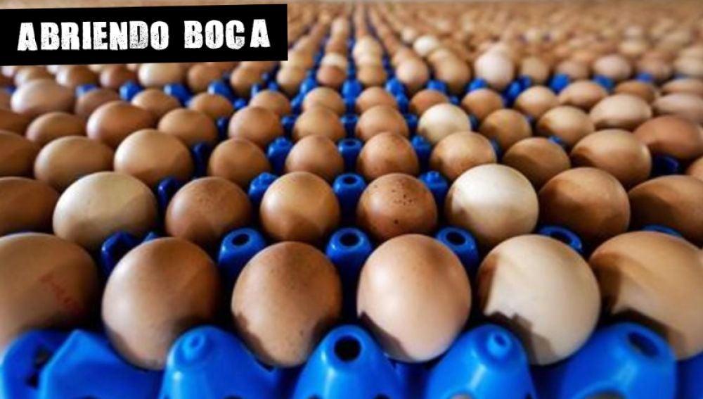 Huevos (Archivo)
