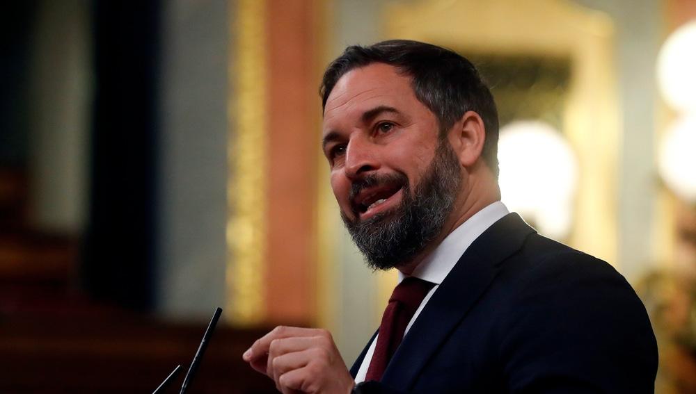 Santiago Abascal, en el Congreso de los Diputados