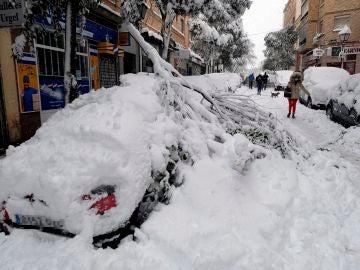 Una rama cae sobre un coche en el barrio madrileño de Urgel, Carabanchel, calle Camino Viejo de Leganés
