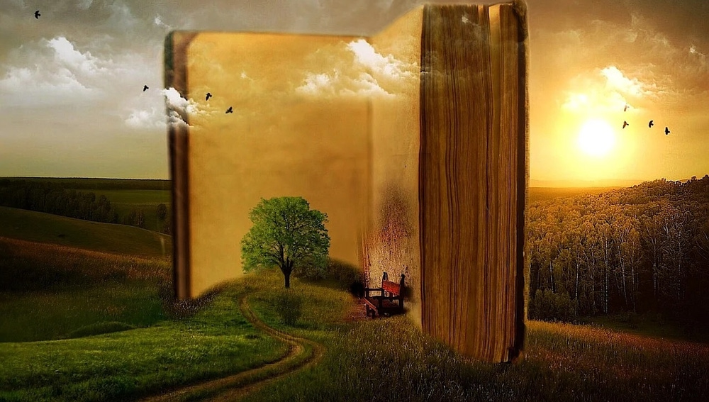 Imagen de archivo de un libro en la naturaleza