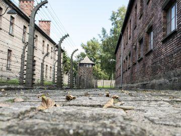 ¿Cómo se celebra el Día del Holocausto en España?