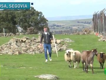 Cartero y granjero por el día, futbolistas por la tarde: Así son algunos jugadores de la Gimnástica Segoviana