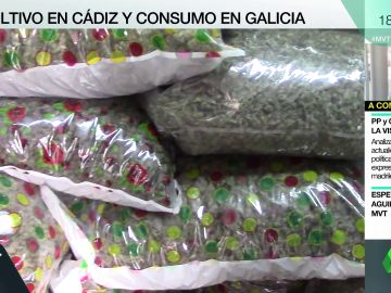 Marihuana envasada al vacío