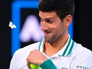 Djokovic, sonriente junto a la mariposa